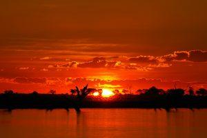 Chobe sunset in Botswana