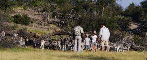 Family Safaris at Chobe