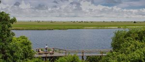 Chobe Game Lodge featured in the press